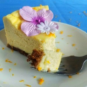 Untitled design 3 - Keto Creamsicle Cheesecake (1g Carb) with Zero Carb Crust