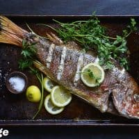 Snapper 2 200x200 - 62 Carnivore Diet Recipes