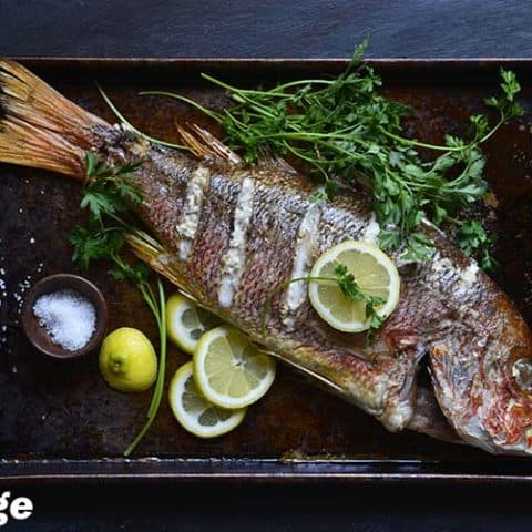 Snapper 2 480x480 - 51 of the Best Carnivore Diet Recipes