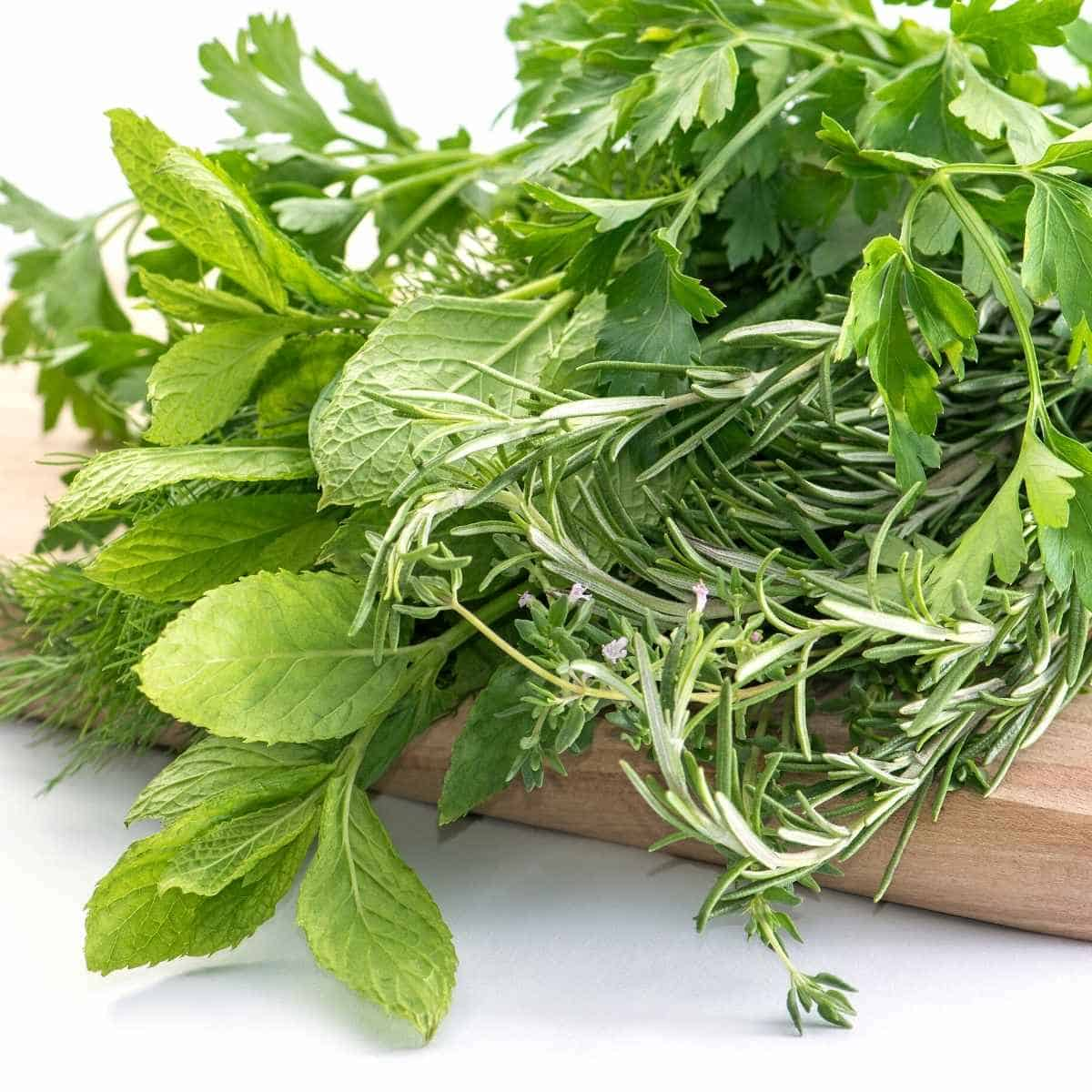 fresh herbs on a cutting board - 36 Herbs And Spices That Are Keto Friendly