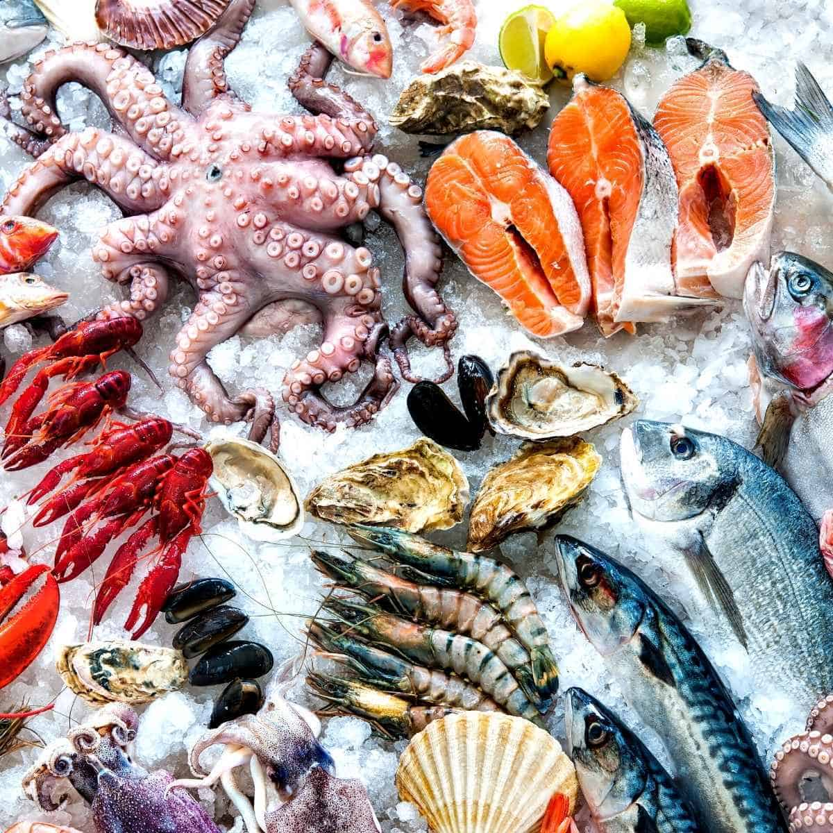 lots of seafood for keto - Is Dry Shrimp Keto? A Nutritionist Ways in with Recipes